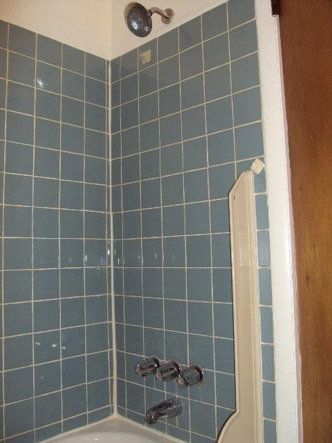 Arendell Shower