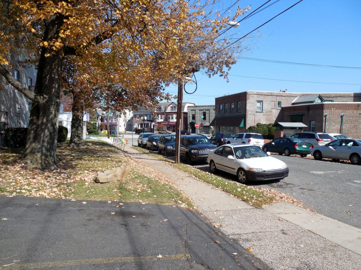 Fox Chase view of street
